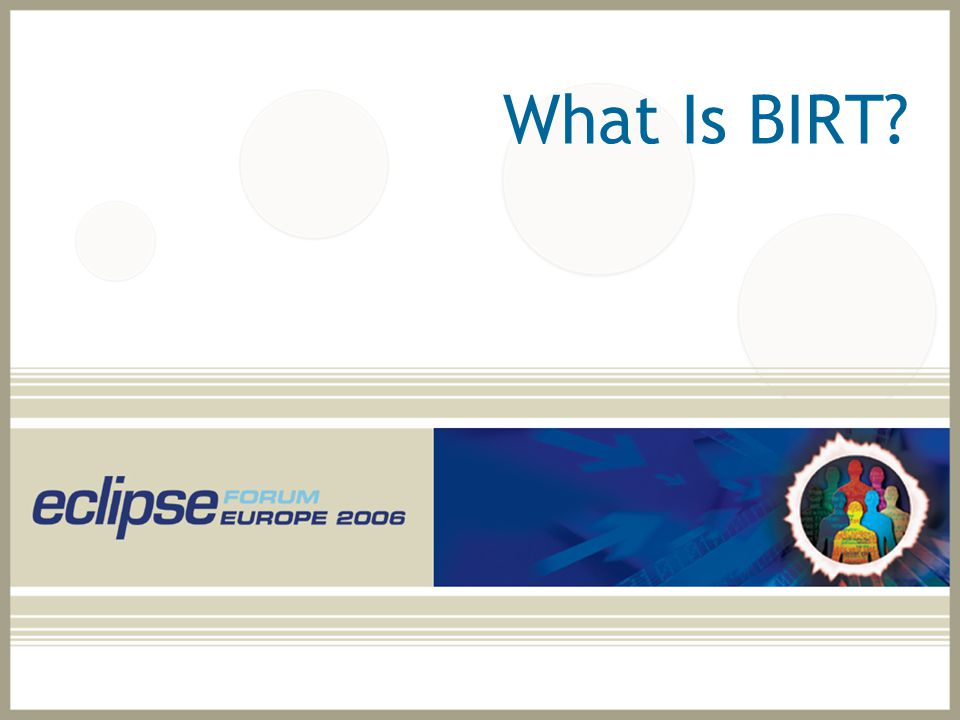 Agenda What is BIRT? BIRT Features and Report Gallery Scripting BIRT