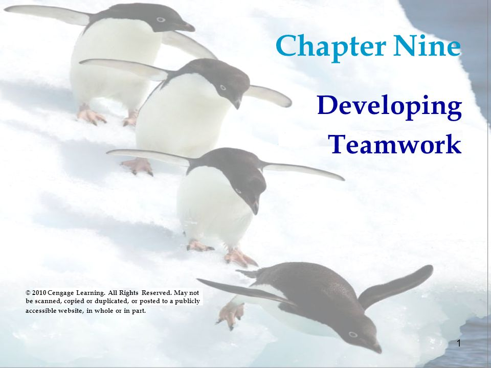 Chapter Nine Developing Teamwork