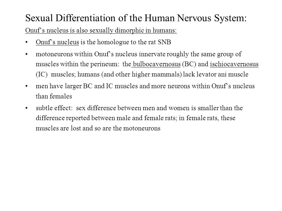 Sexual Differentiation of the Human Nervous System: