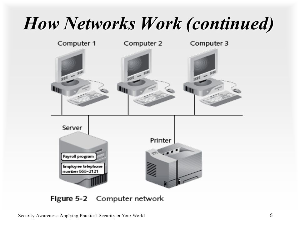 How Networks Work (continued)