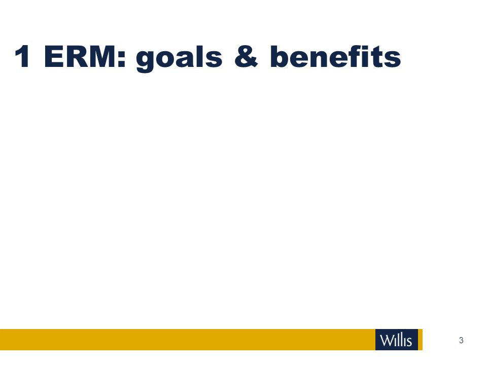 1 ERM: goals & benefits