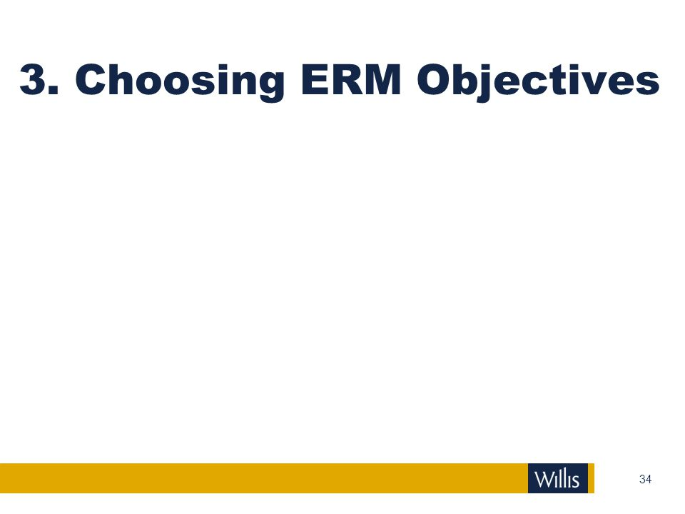 3. Choosing ERM Objectives
