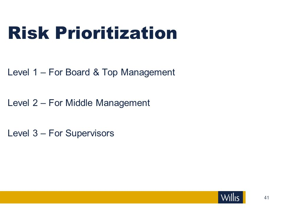 Risk Prioritization Level 1 – For Board & Top Management