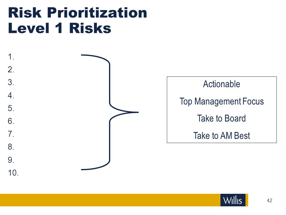 Risk Prioritization Level 1 Risks