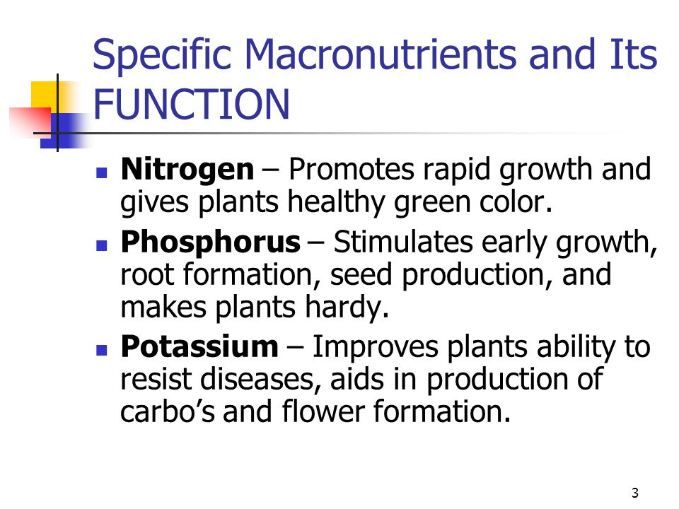 Functions Of Nutrients For Plant Growth Ppt Video Online Download
