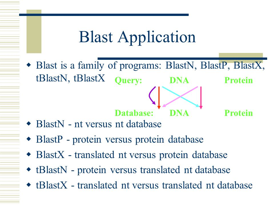 Blast Application Blast is a family of programs: BlastN, BlastP, BlastX, tBlastN, tBlastX. BlastN - nt versus nt database.