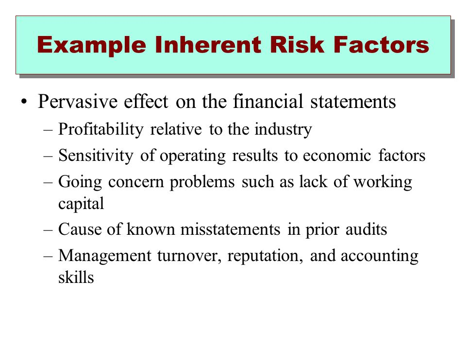 Example Inherent Risk Factors