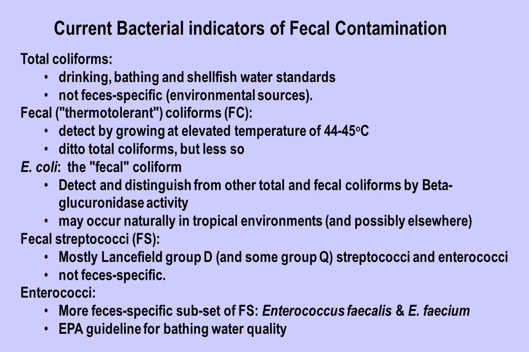 bacterial contamination in drinking water pdf