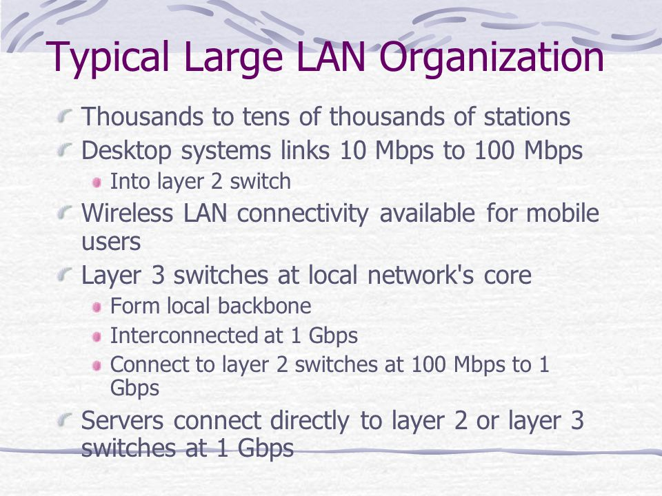 Typical Large LAN Organization