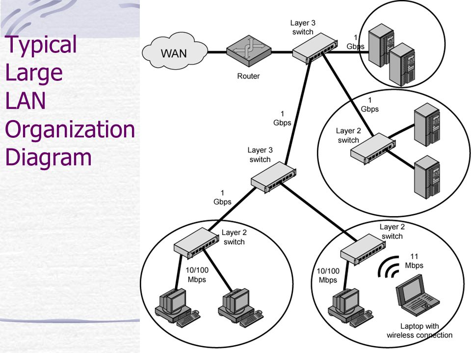 Typical Large LAN Organization Diagram