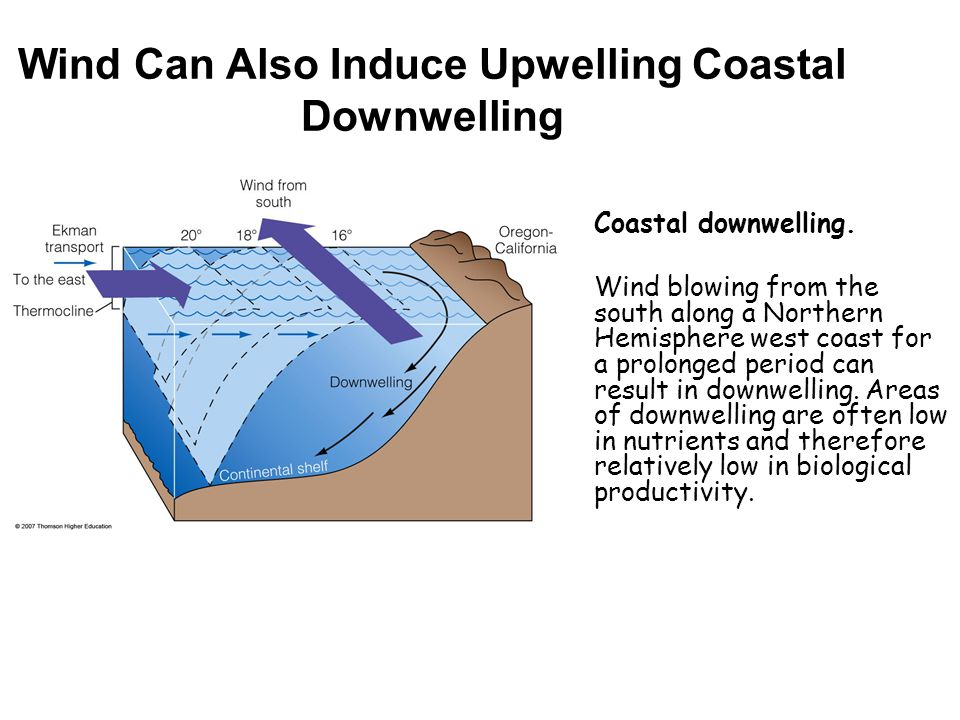 Wind Can Also Induce Upwelling Coastal Downwelling