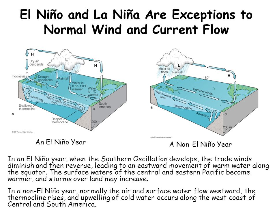 El Niño and La Niña Are Exceptions to Normal Wind and Current Flow