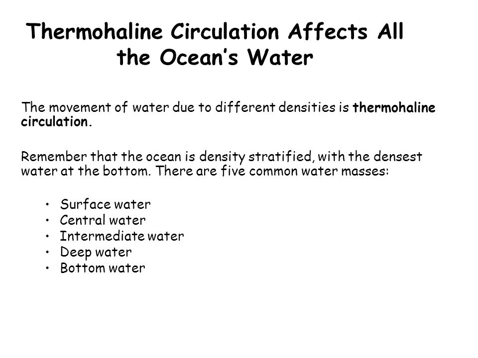 Thermohaline Circulation Affects All the Ocean's Water