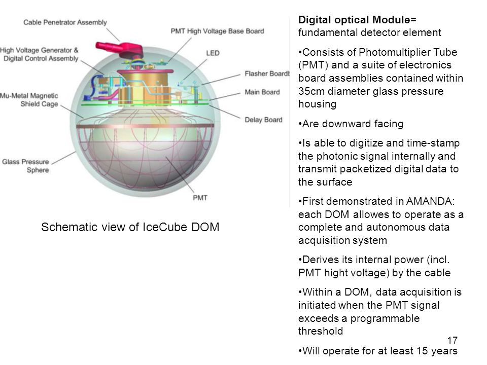 Schematic view of IceCube DOM