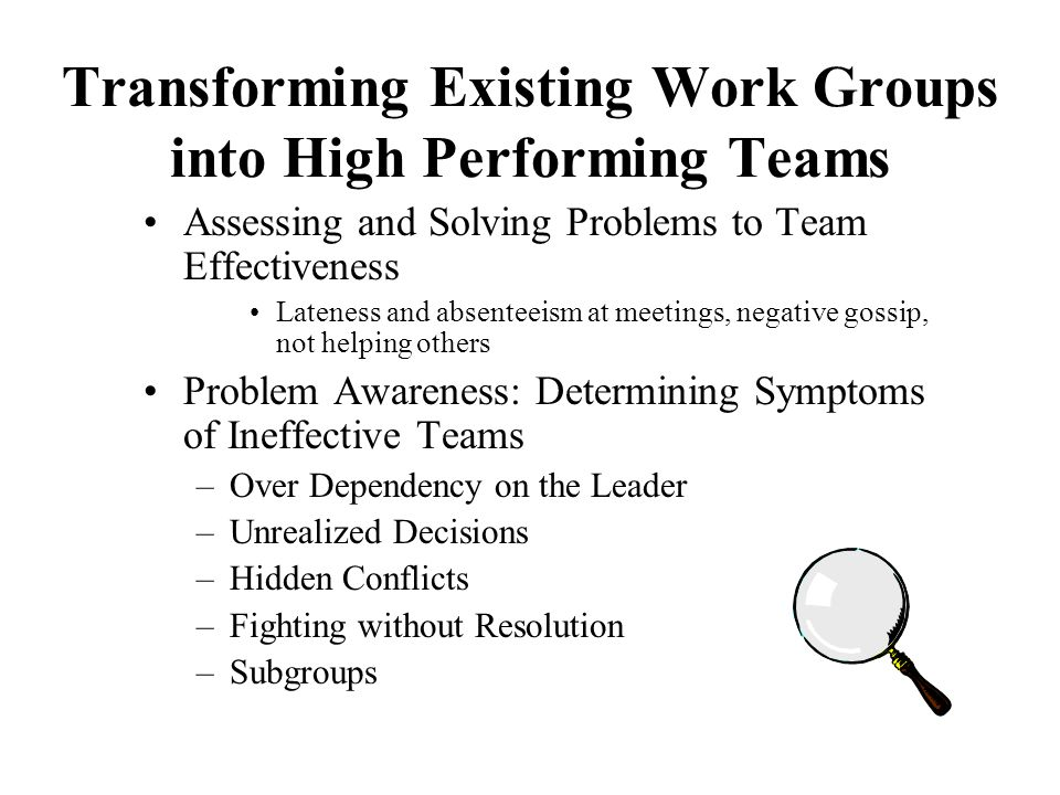Transforming Existing Work Groups into High Performing Teams