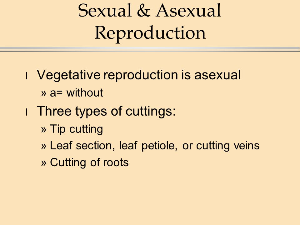 3 asexual reproduction methods include