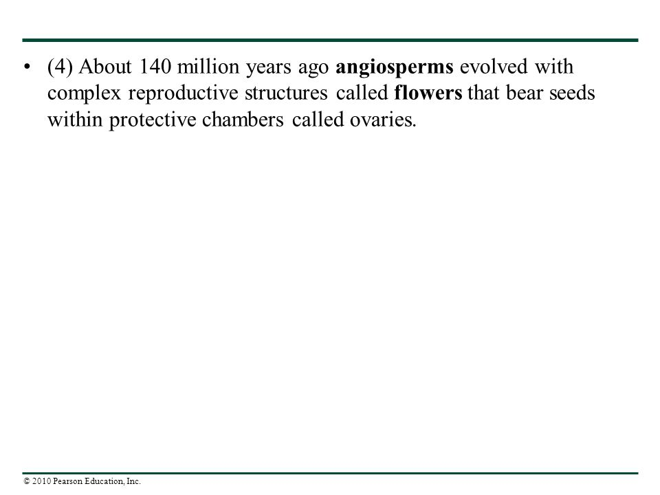 (4) About 140 million years ago angiosperms evolved with complex reproductive structures called flowers that bear seeds within protective chambers called ovaries.