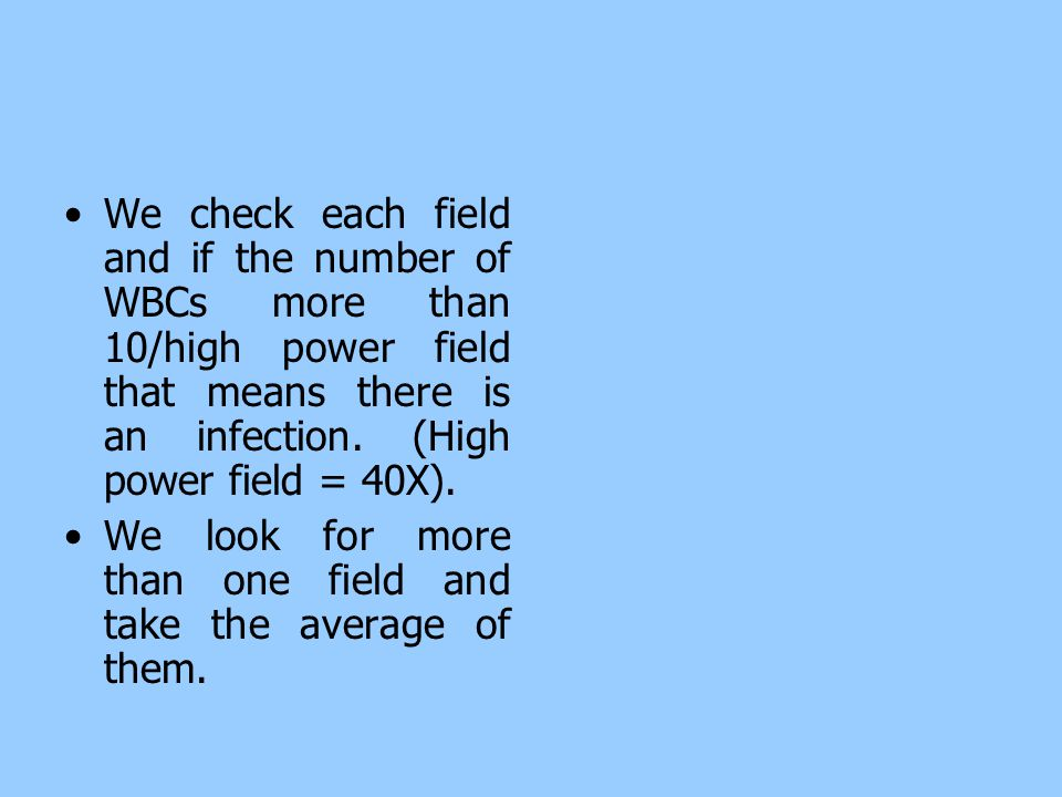 We check each field and if the number of WBCs more than 10/high power field that means there is an infection. (High power field = 40X).