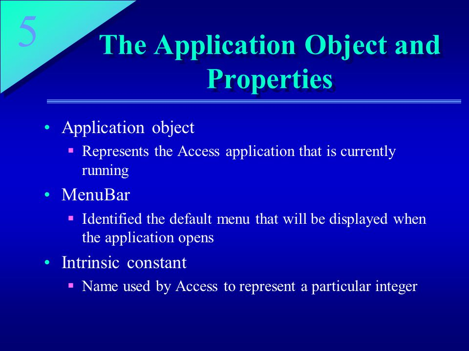 The Application Object and Properties