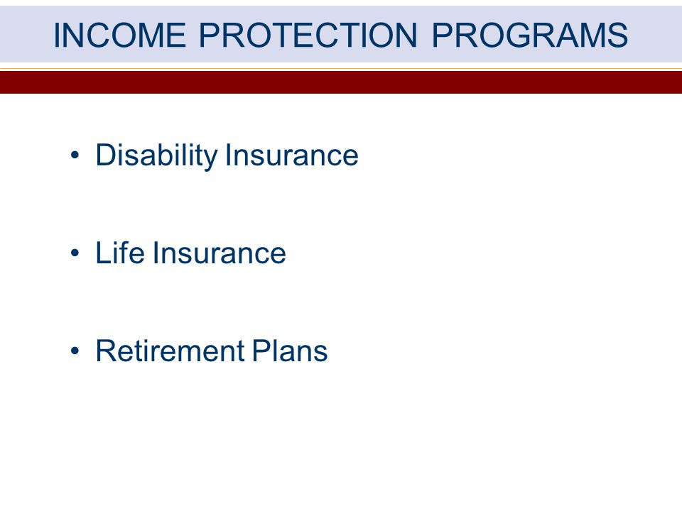 INCOME PROTECTION PROGRAMS