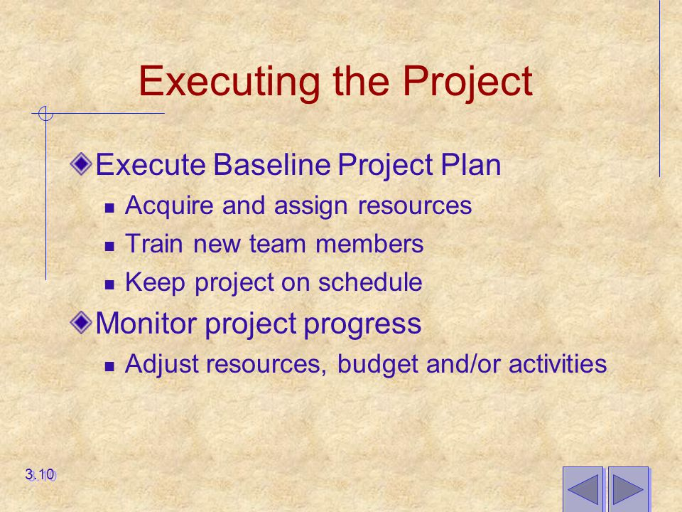 Executing the Project Execute Baseline Project Plan