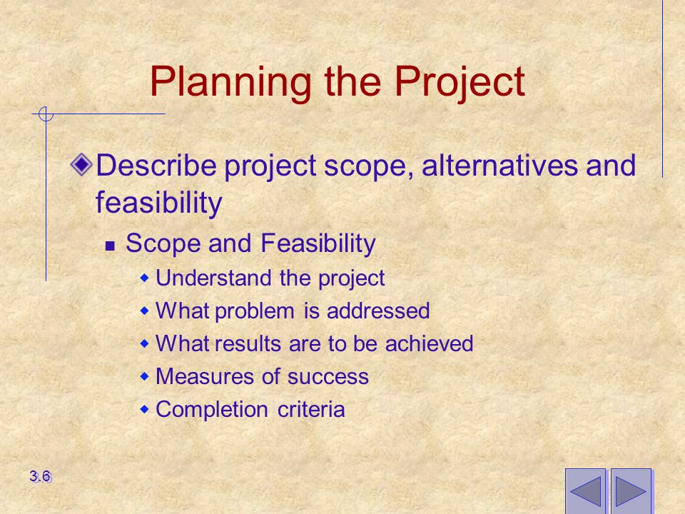 Planning the Project Describe project scope, alternatives and feasibility. Scope and Feasibility. Understand the project.