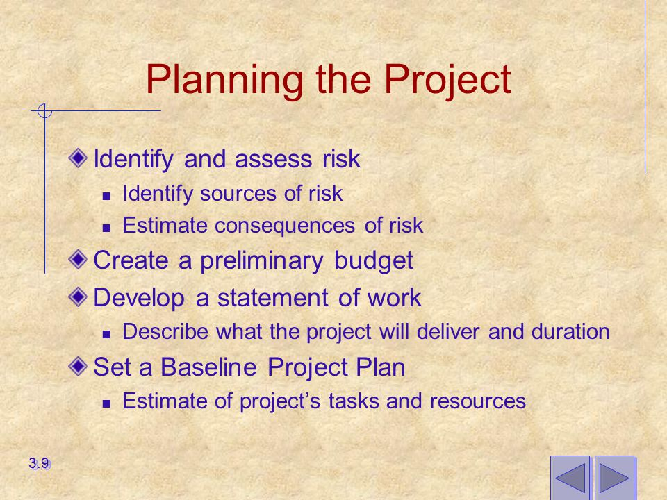 Planning the Project Identify and assess risk