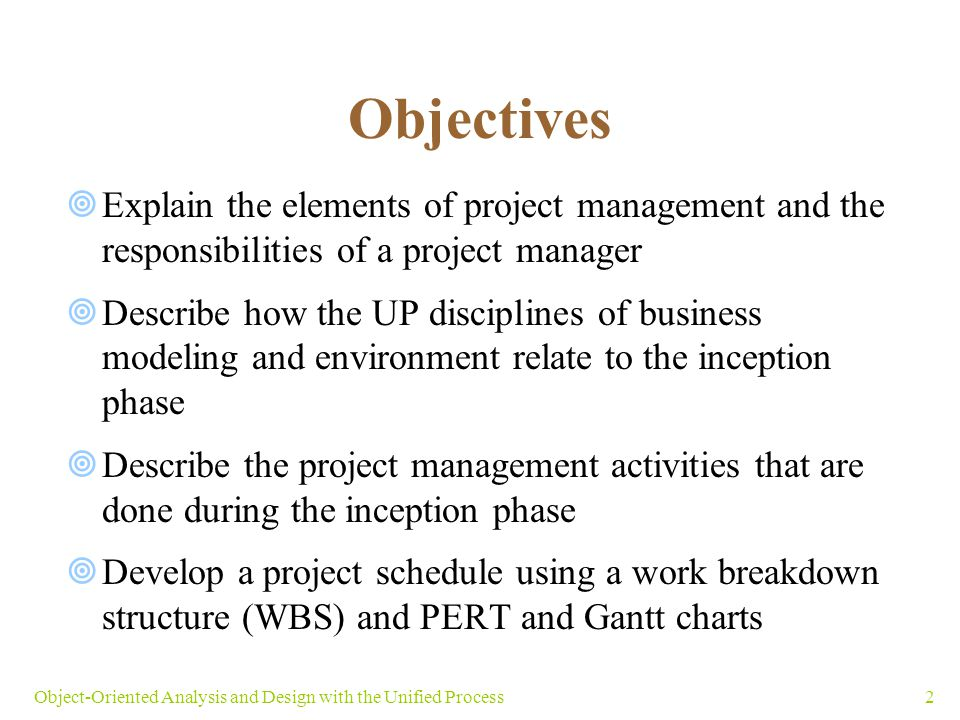 Objectives Explain The Elements Of Project Management And The