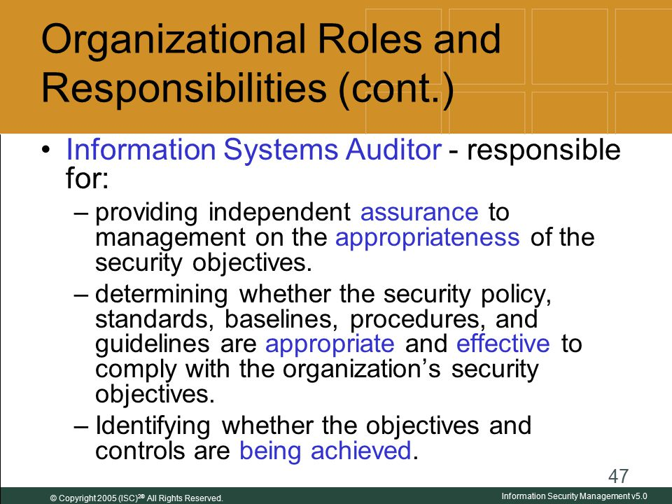 organizational guidelines for internet usage