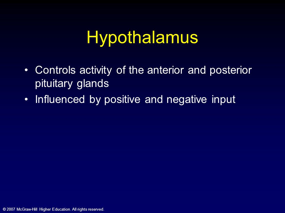 Hypothalamus Controls activity of the anterior and posterior pituitary glands.