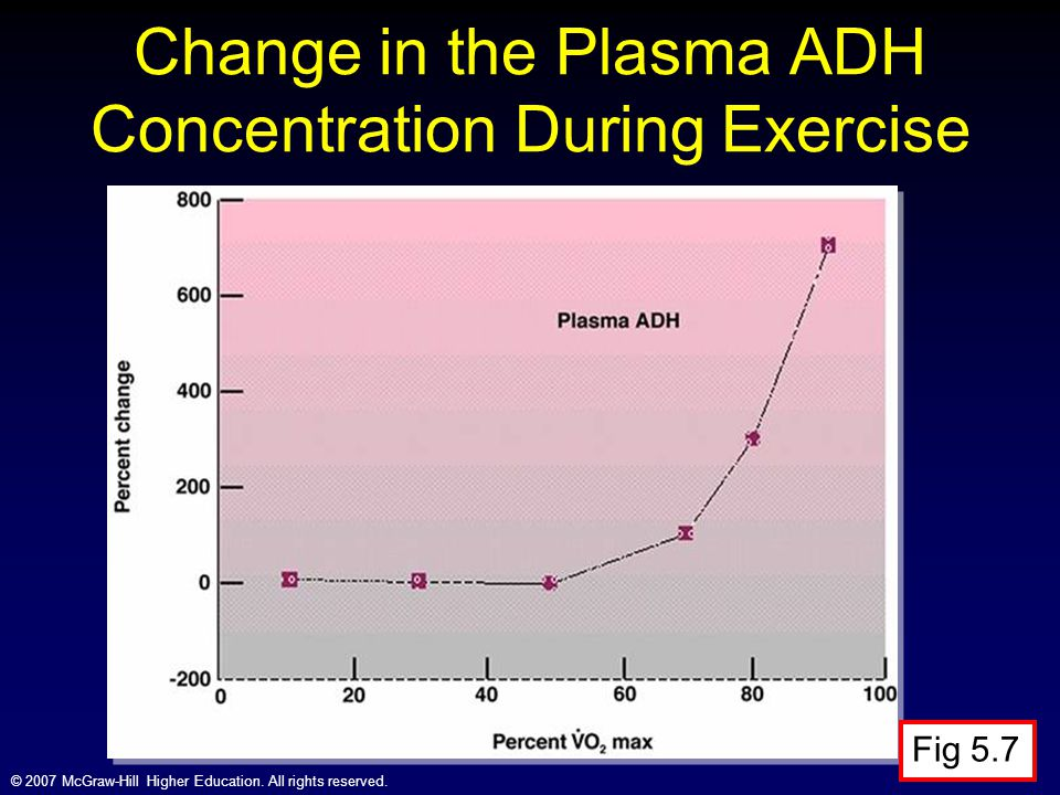 Change in the Plasma ADH Concentration During Exercise