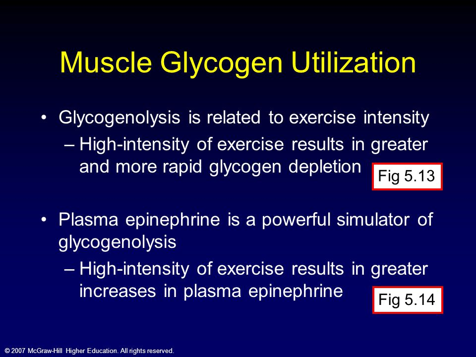 Muscle Glycogen Utilization