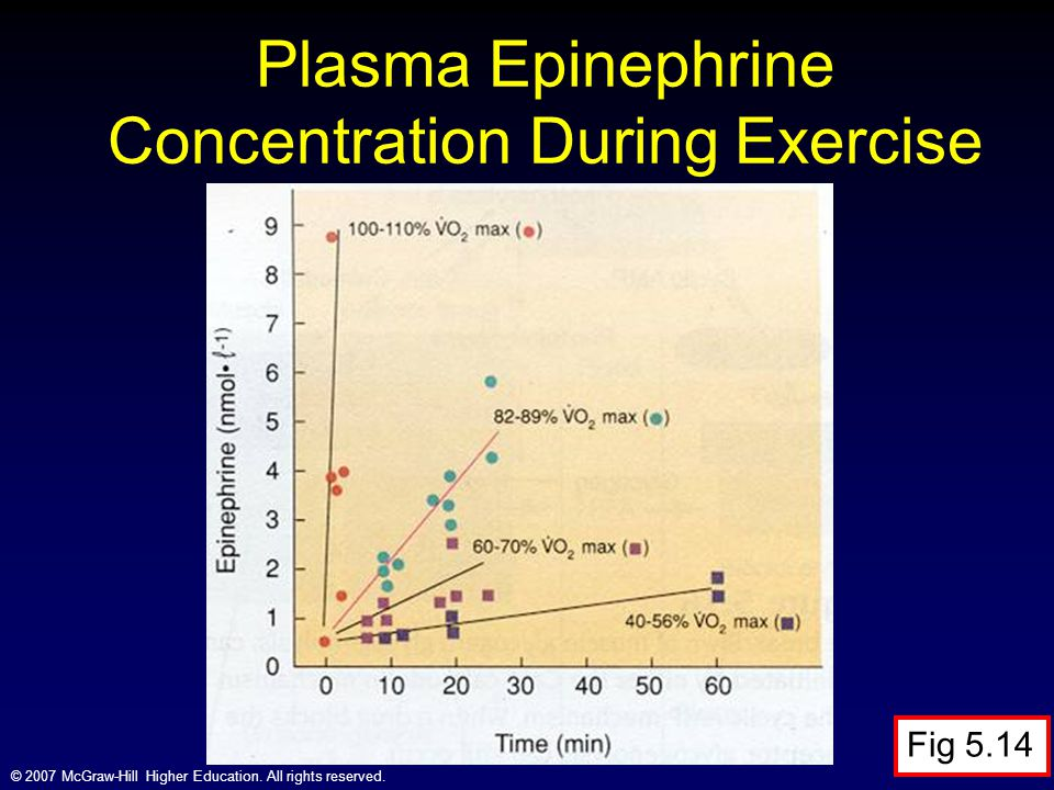 Plasma Epinephrine Concentration During Exercise