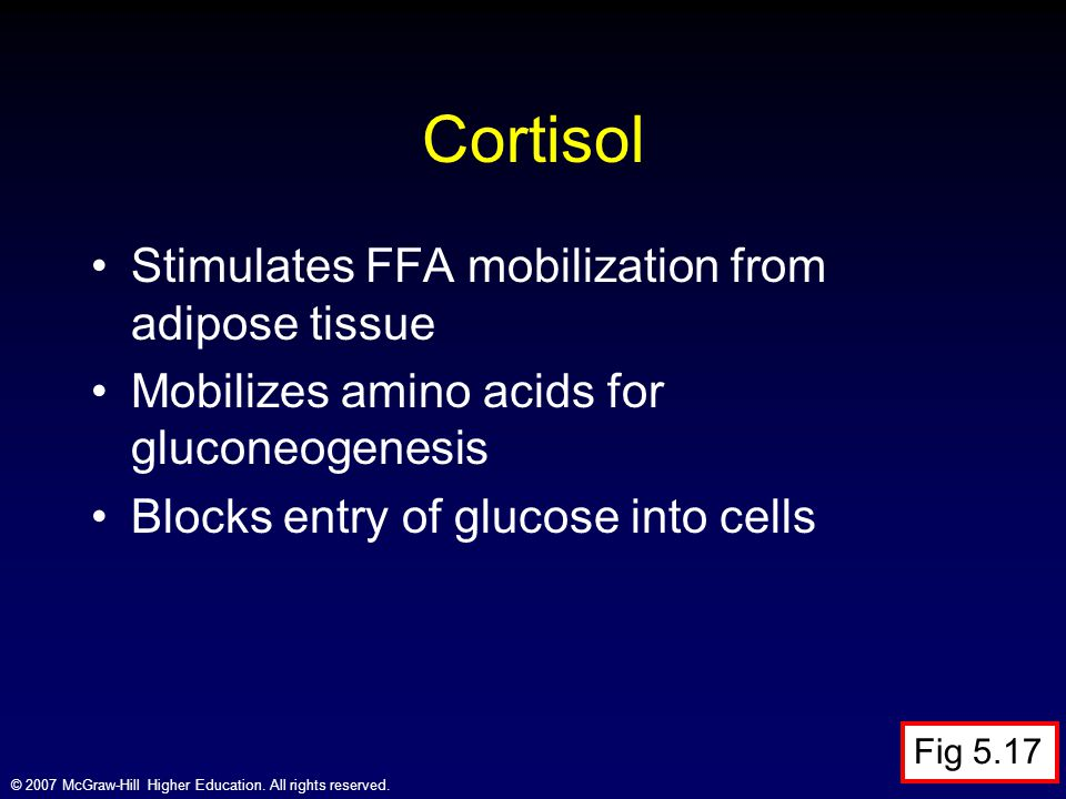 Cortisol Stimulates FFA mobilization from adipose tissue
