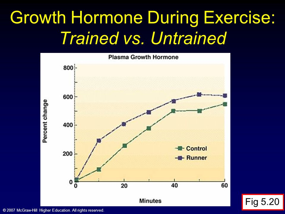 Growth Hormone During Exercise: Trained vs. Untrained