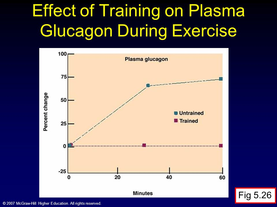 Effect of Training on Plasma Glucagon During Exercise