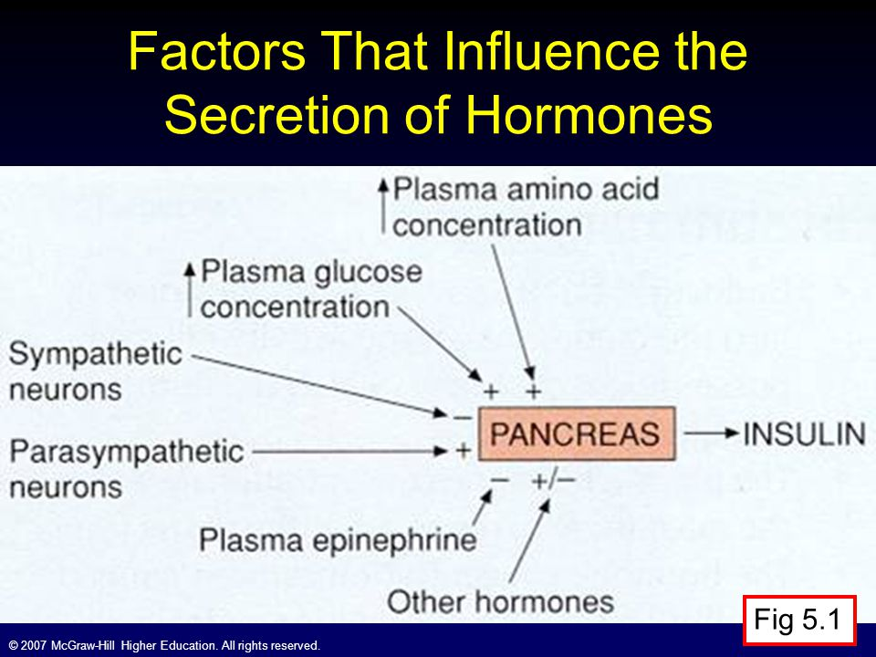 Factors That Influence the Secretion of Hormones