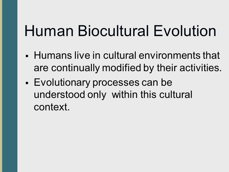 what is a biocultural perspective quizlet