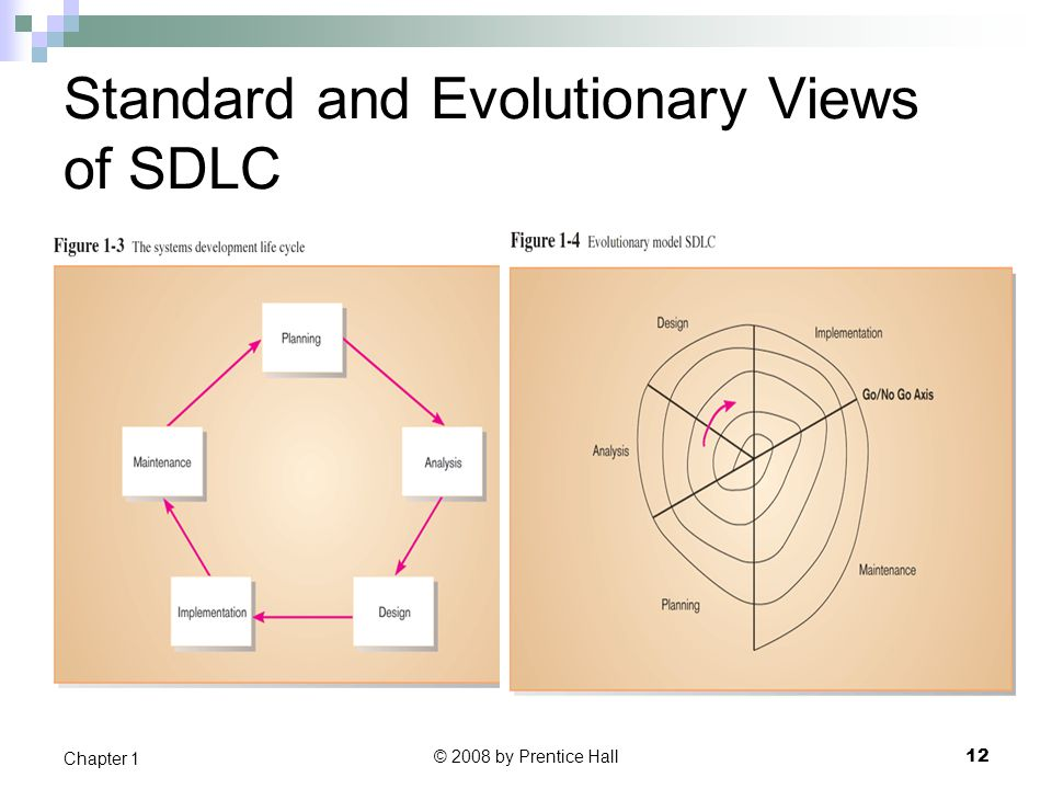 Standard and Evolutionary Views of SDLC