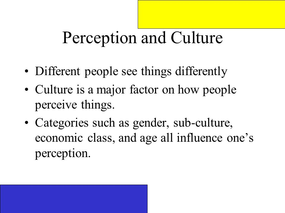 why do we perceive things differently