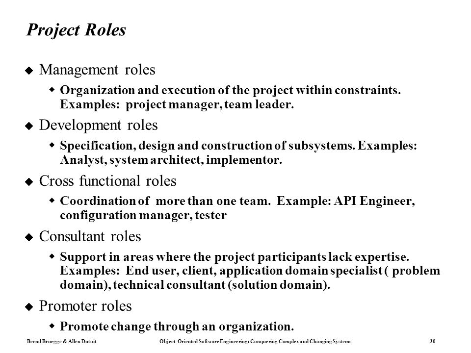 managerial roles within the functional areas Managers role in a business business's all have different functions, goals, and ratios to gauge, to be successful marketing is another functional area that businesses thrive on some in my opinion view this as just a tool that is used to bring in business on a particular product.