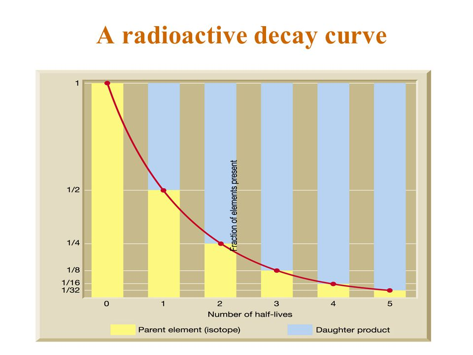 A radioactive decay curve