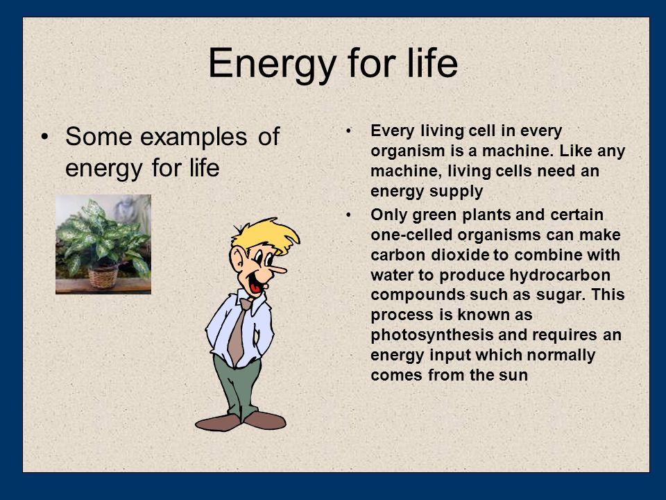 Energy for life Some examples of energy for life