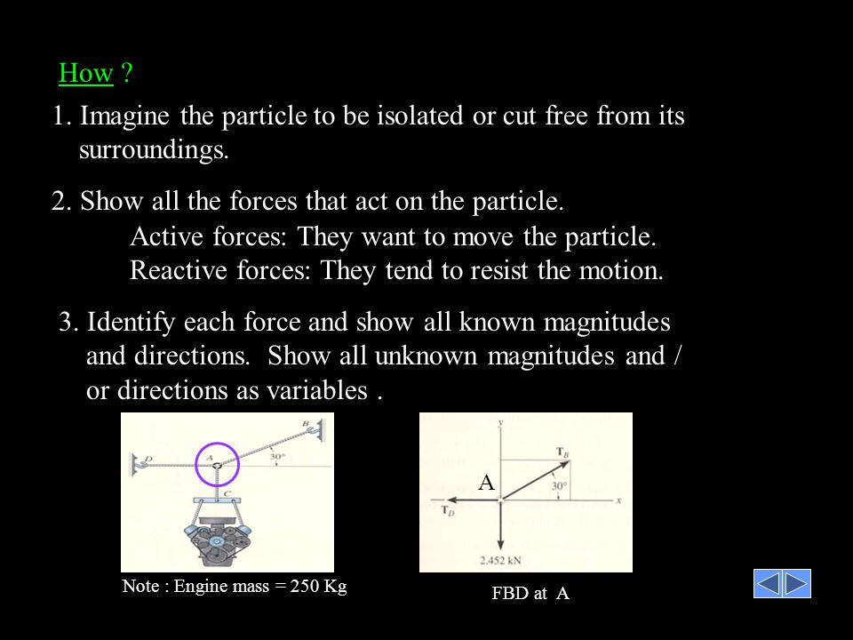 2. Show all the forces that act on the particle.