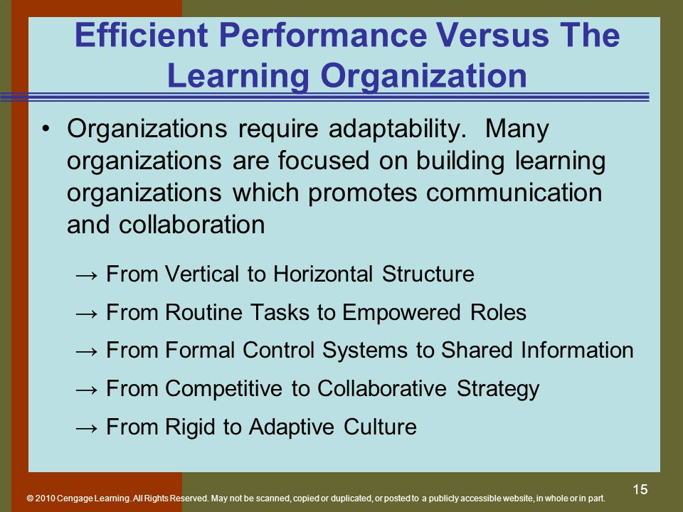 Efficient Performance Versus The Learning Organization