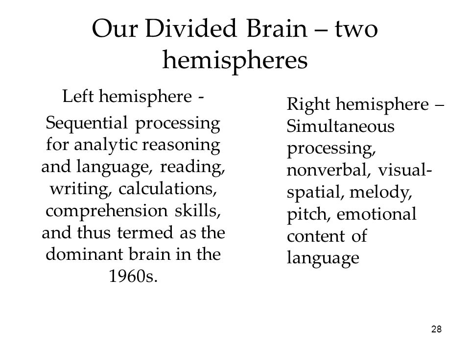 Our Divided Brain – two hemispheres