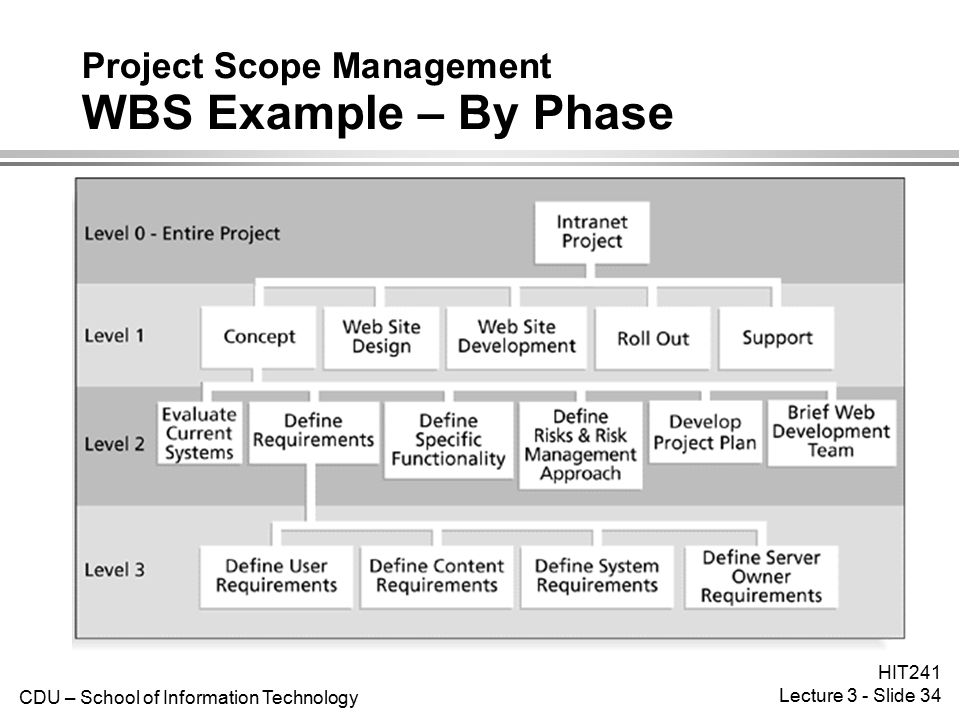 project management information systems Computer and information systems managers, often called information technology (it) managers or it project managers, plan, coordinate, and direct computer-related activities in an organization they help determine the information technology goals of an organization and are responsible for.