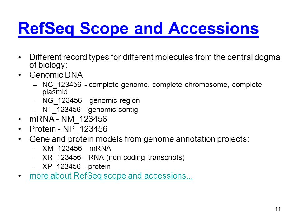 RefSeq Scope and Accessions