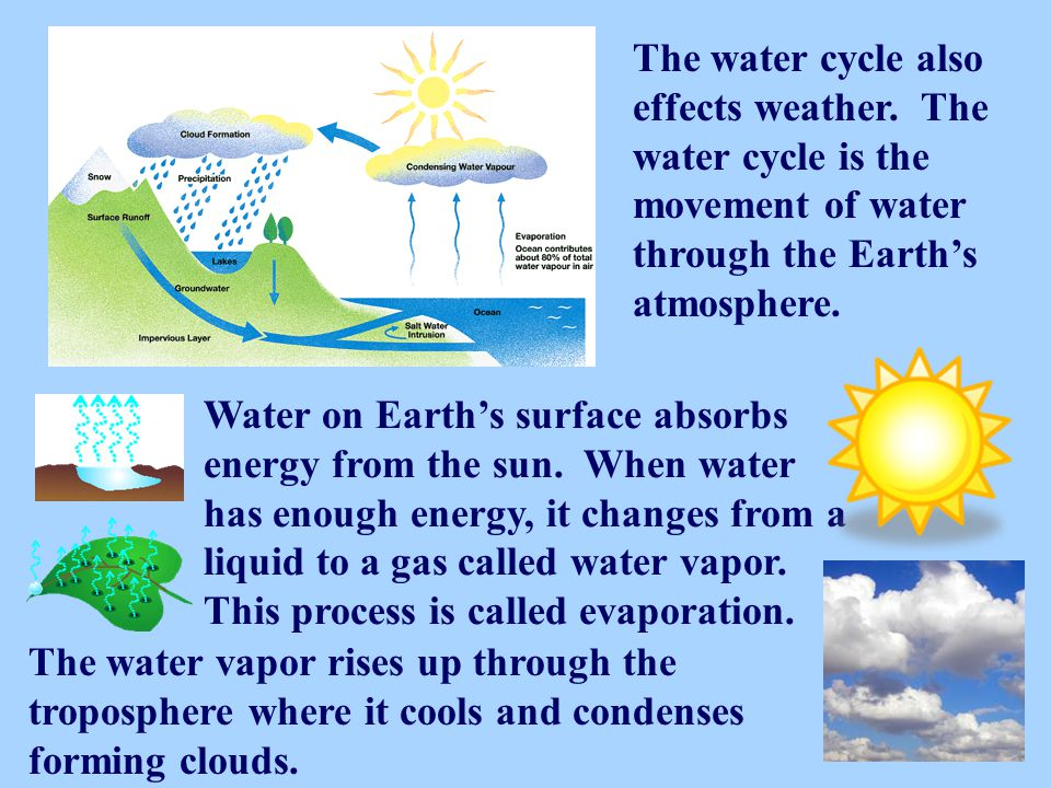 The water cycle also effects weather
