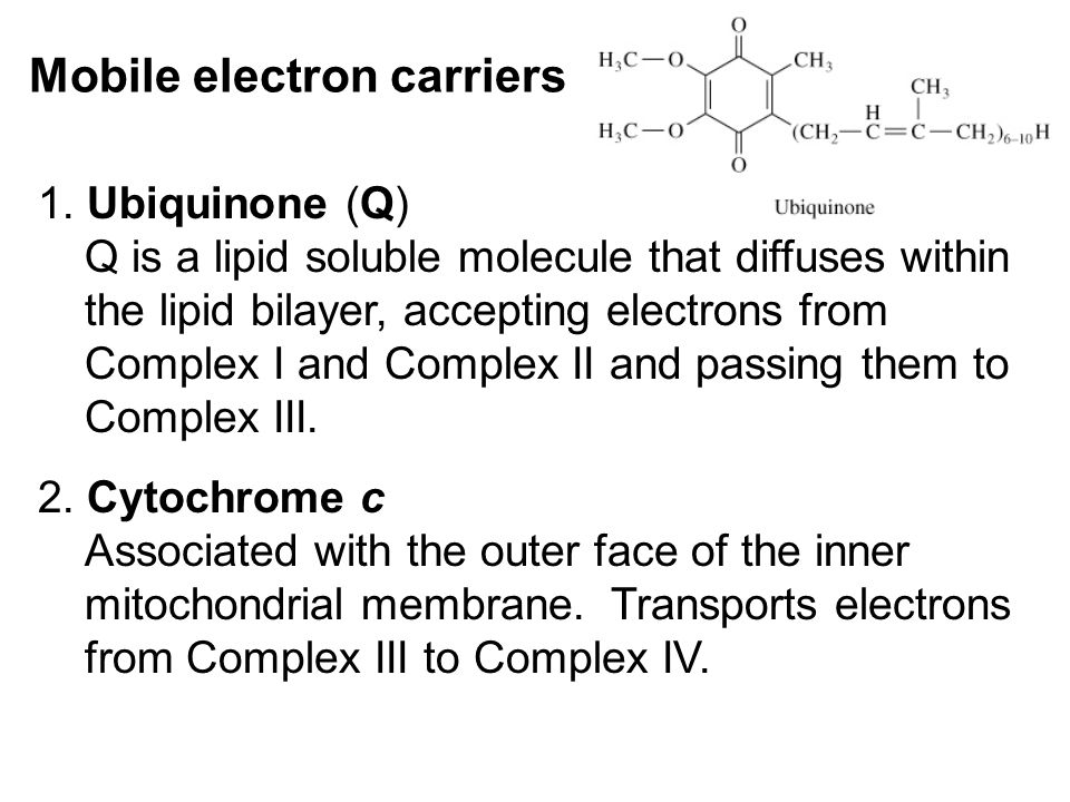Mobile electron carriers